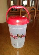 Dollywood Large Plastic Container with Handle in Glendale Heights, Illinois
